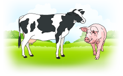 Illustration of a cow and pig in a field
